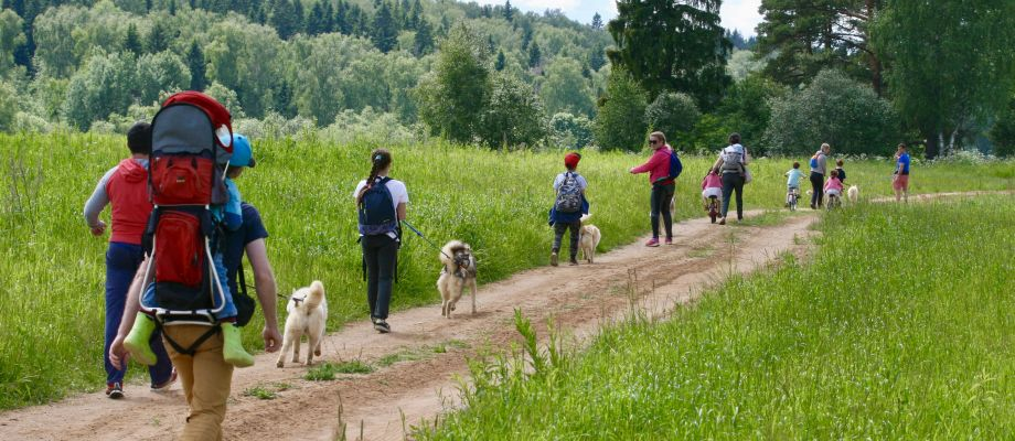 Randonnée avec chiens Huskys, Voyage Russie