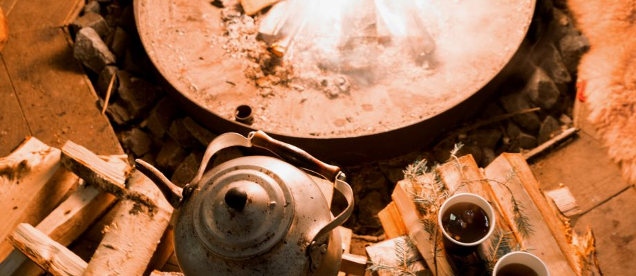 Saint Petersbourg - Chiens de traineau et shashliks